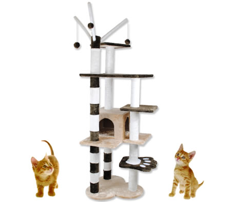 Visit 5 Level Cat/Kitten Gym Tree Scratching Pole