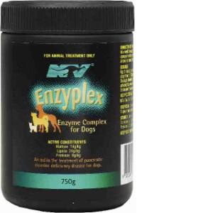 Visit Enzyplex 750gm X 2