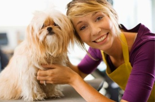 Visit Adelaide  Complete Dog Grooming Package