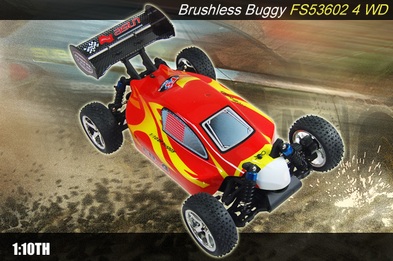 Visit 1/10th FS Racing BL-4 Brushless 2.4GHz RC High Speed 4WD Buggy